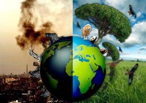 environmental-choice